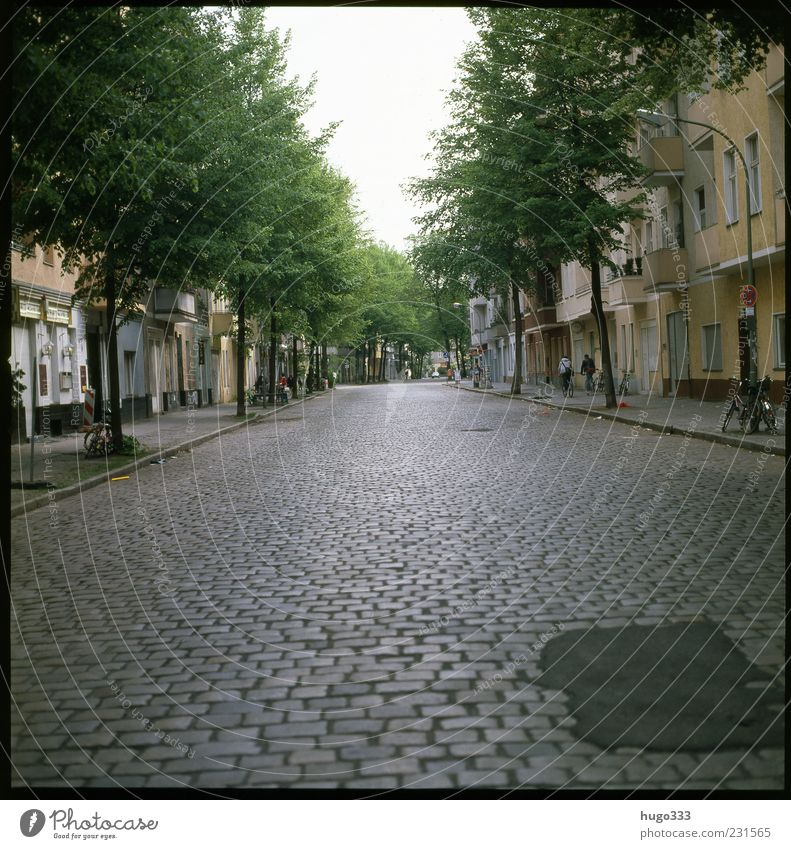 Berlin XIII Neukölln Town Capital city Traffic infrastructure Road traffic Pedestrian Street Yellow Green Paving stone Tree Free Sky Colour photo Exterior shot