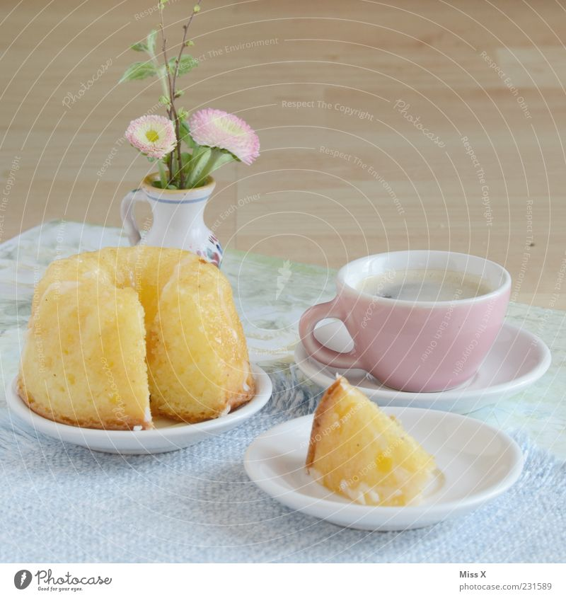 Sunday table Food Cake Nutrition To have a coffee Hot drink Coffee Crockery Plate Cup Flower Small Delicious Sweet Miniature Coffee cup Gugelhupf Flower vase