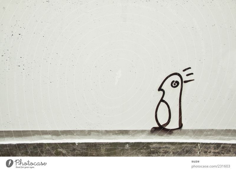 Who am I ... Art Wall (barrier) Wall (building) Facade Animal Bird Penguin 1 Authentic Simple Uniqueness Funny Gloomy Gray White Graffiti Comic Drawing Daub