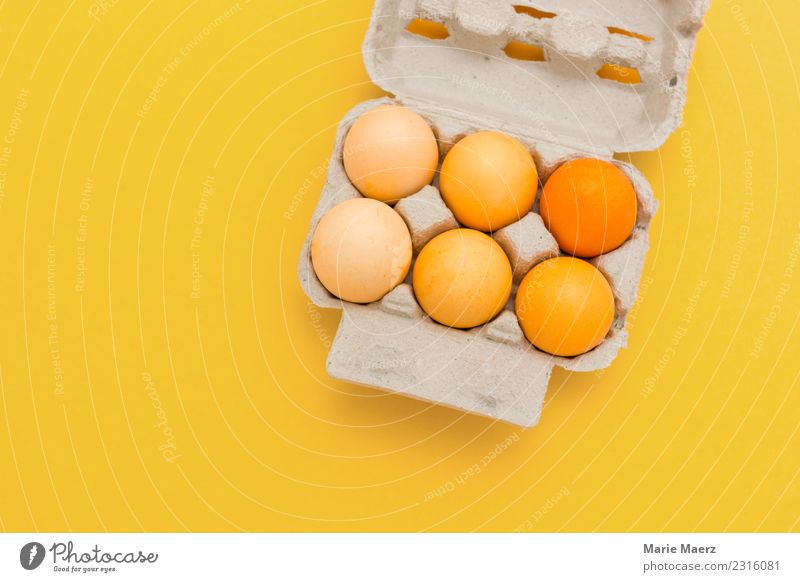 Yellow coloured Easter eggs on yellow background Food Egg Nutrition Style Joy Eating Feasts & Celebrations Esthetic Happiness Fresh Orange Contentment Colour