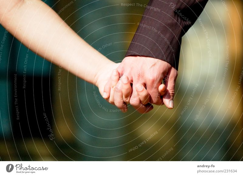 Human being Woman Man Hand Adults Love Emotions Happy Friendship Together Future Fingers Touch To hold on Friendliness Trust