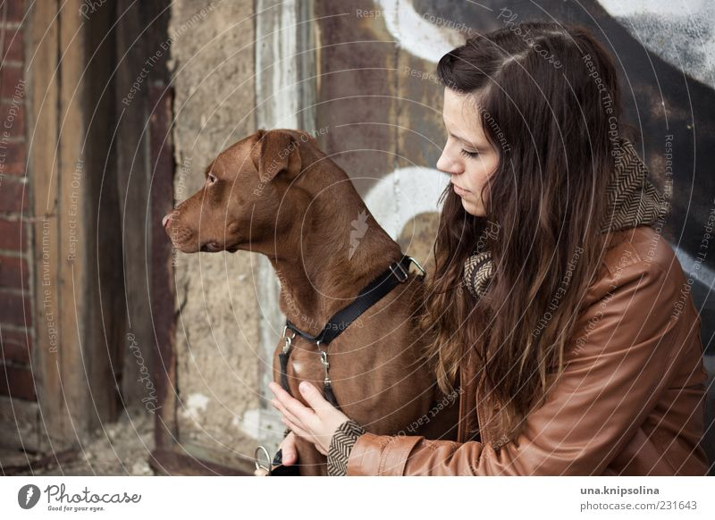Woman Human being Youth (Young adults) Dog Animal Adults Feminine Friendship Brown 18 - 30 years To hold on Brunette Young woman Pet Long-haired Embrace
