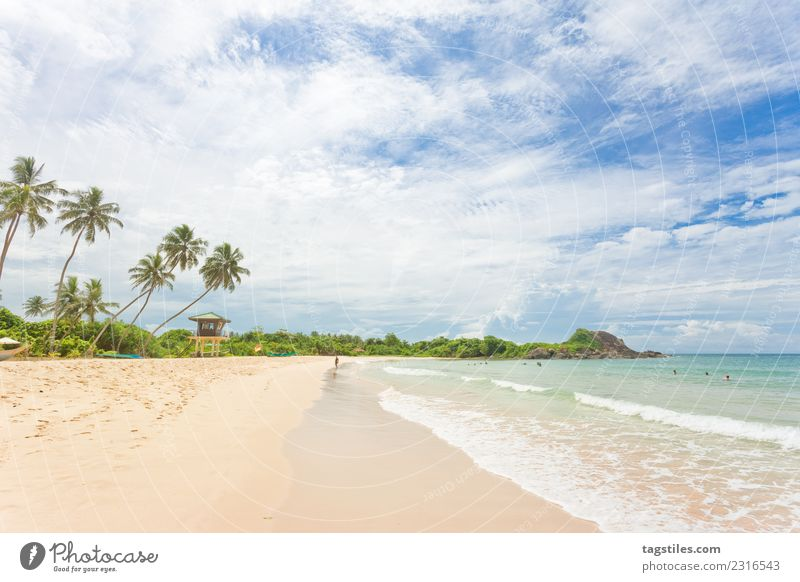Sri Lanka - Farsightedness at the beach of Balapitiya Asia Bay Beach breakers Coast Dreamily Exclusive exquisite Fine Footprint Illuminate Landscape Leaf Nature