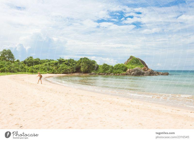 Balapitiya - A woman in a bay at the beach of Balapitiya Asia Bay Beach Bushes Calm calming Coast Woman Idyll Illuminate Landscape Leaf Natural Nature Ocean