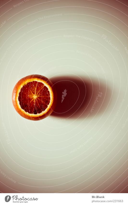Red Gray Orange Healthy Fruit Lie Round Delicious Juicy Vegetarian diet Shadow Light Citrus fruits Sliced Food photograph