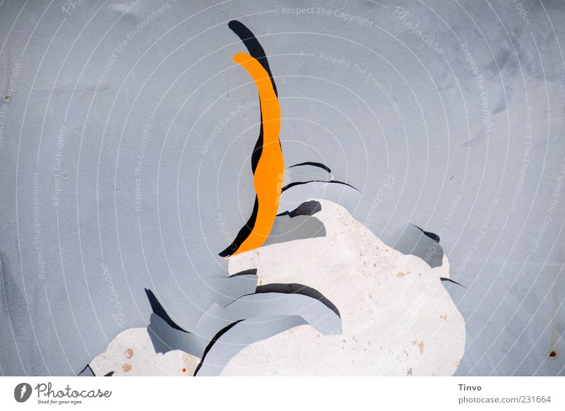 Old Colour Gray Metal Orange Background picture Change Abstract Flake off Paints and varnish Paintwork