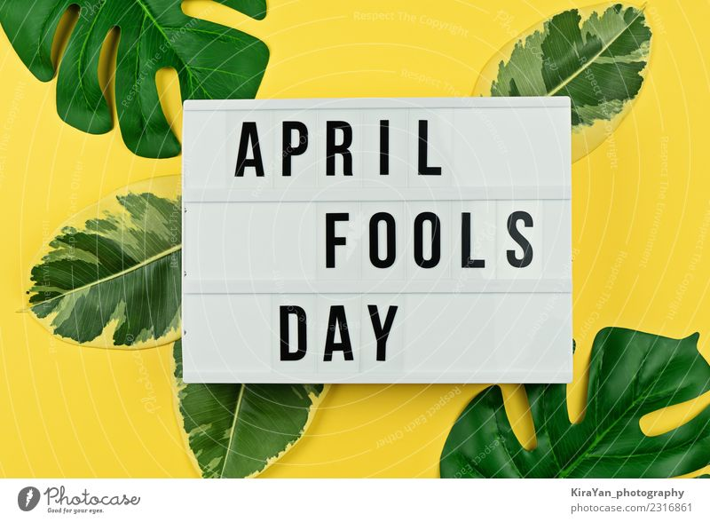April Fool's day and tropical leaves on yellow Green Leaf Joy Yellow Spring Funny Laughter Happy Feasts & Celebrations Moody Symbols and metaphors Card Event