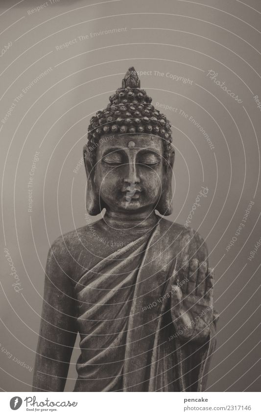 slow down! Calm Meditation Exhibition Kitsch Odds and ends Sign Exotic Statue of Buddha Gesture Asia Religion and faith Spirituality Monochrome Figure