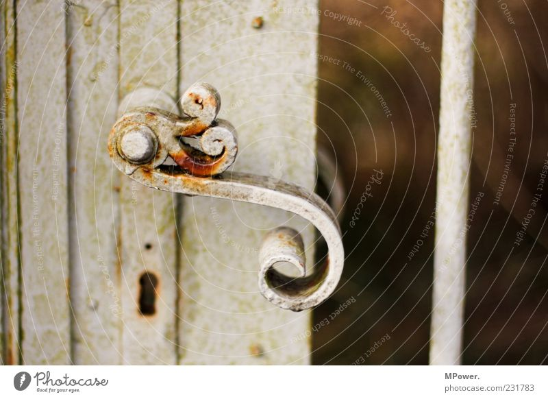 S Gate Door Metal Lock Old White Keyhole Door handle Rust Iron Undo Gray Rod Curved Closed Door opener Colour photo Exterior shot Close-up Detail Deserted Day