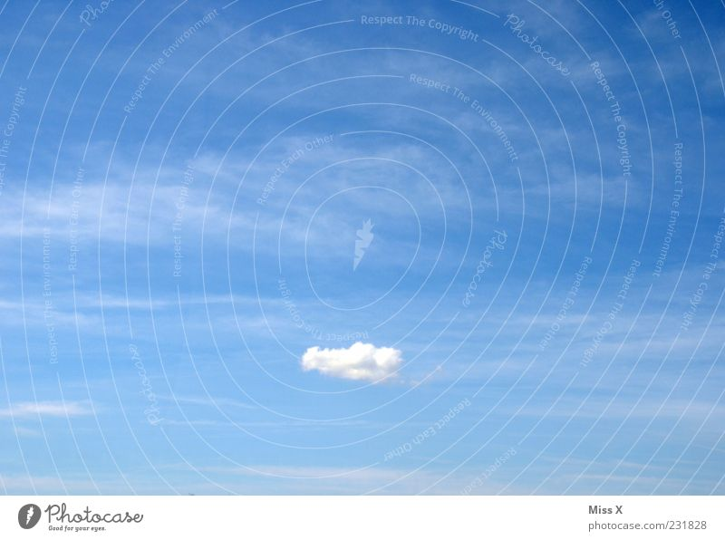 Sky Clouds Far-off places Air Weather Flying Climate Exceptional Infinity Individual Beautiful weather Blue sky Veil of cloud Cotton wool clouds Sky only