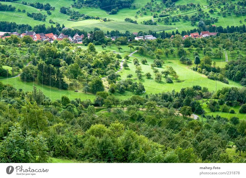 Nature Green Vacation & Travel Summer Calm House (Residential Structure) Forest Meadow Landscape Tourism Climate Hill Village Beautiful weather Land Feature Swabian