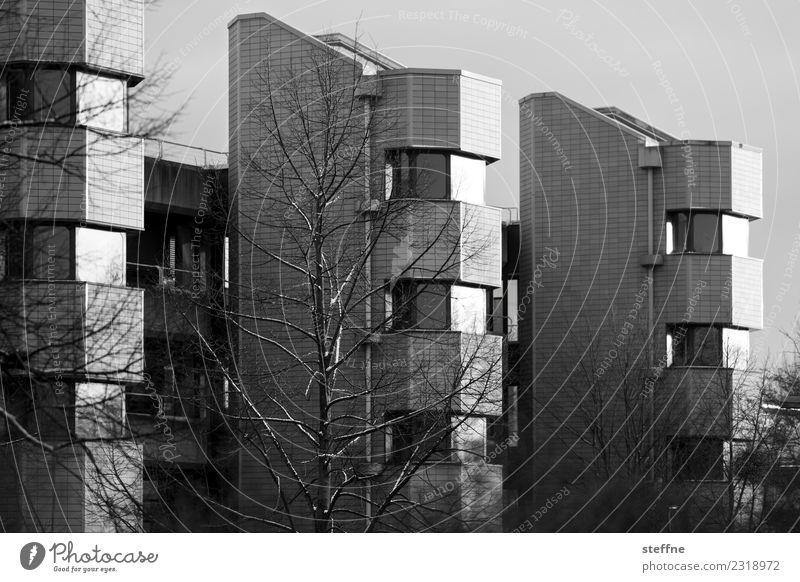Town House (Residential Structure) Winter Facade Living or residing Goettingen