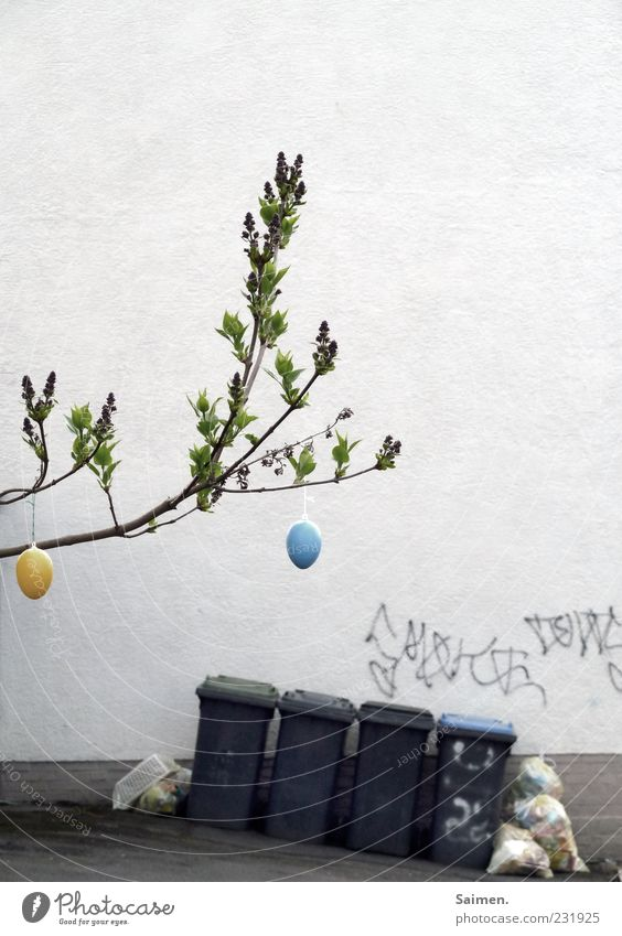 cityeaster impression House (Residential Structure) Wall (barrier) Wall (building) Facade Easter Tree Egg Easter egg Trash Trash container Backyard Graffiti