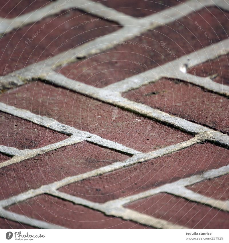 Zigzag Tile Palster Lanes & trails Paving stone Brick Brick red Brown Red Design Arrangement serrated Abstract Pattern Structures and shapes Blur