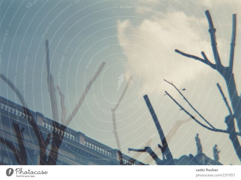 impression Sky Clouds Climate Tree Manmade structures Building Wood Blue Gray Double exposure Analog Branch Branchage Colour photo Exterior shot Lomography