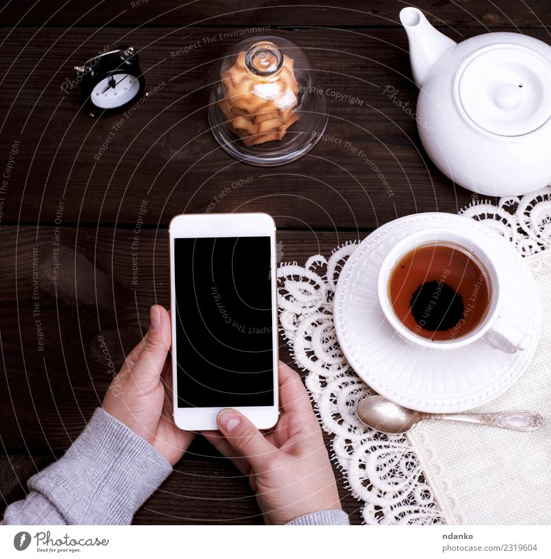 female hands holding a white smartphone Woman Human being Youth (Young adults) White Hand 18 - 30 years Black Adults Lifestyle Brown Technology Vantage point