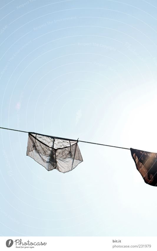 Sky Blue Black Gray Wet Clothing Clean Beautiful weather Hang Transparent Lust Lace Laundry Underwear Dry
