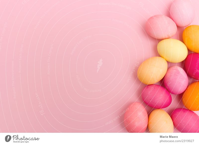 Pink background with colourful Easter eggs Eating Feasts & Celebrations Lie Esthetic Happiness Delicious Warmth Multicoloured Spring fever Leisure and hobbies