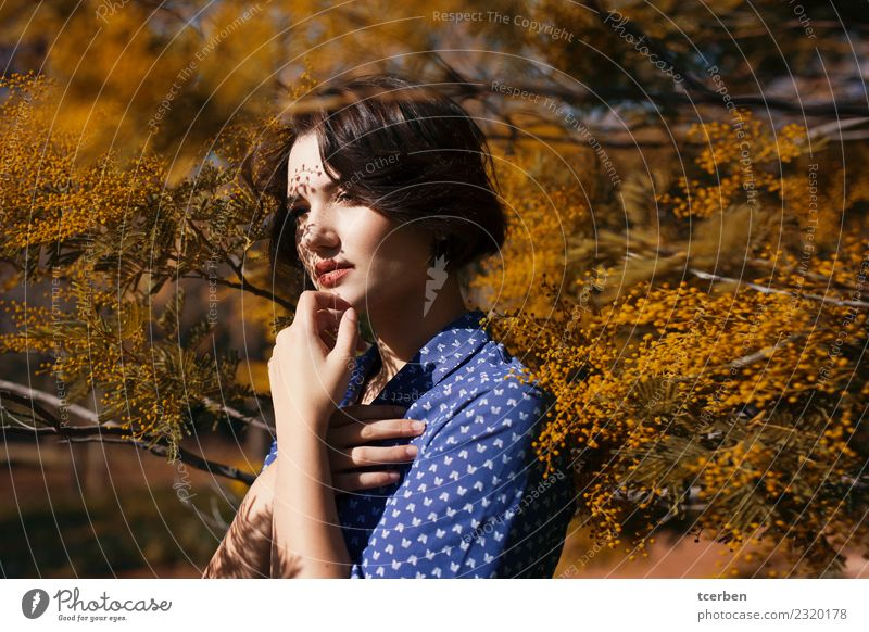 Woman surrounded by a Mimosa tree with shadows on her face Human being Youth (Young adults) Young woman Blue Beautiful Tree 18 - 30 years Adults Yellow Spring