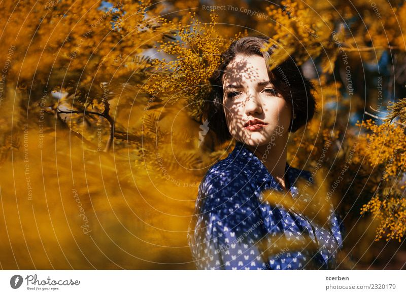 Woman surrounded by a Mimosa tree with shadows on her face Human being Youth (Young adults) Young woman Blue Beautiful Sun Tree Calm 18 - 30 years Adults Yellow