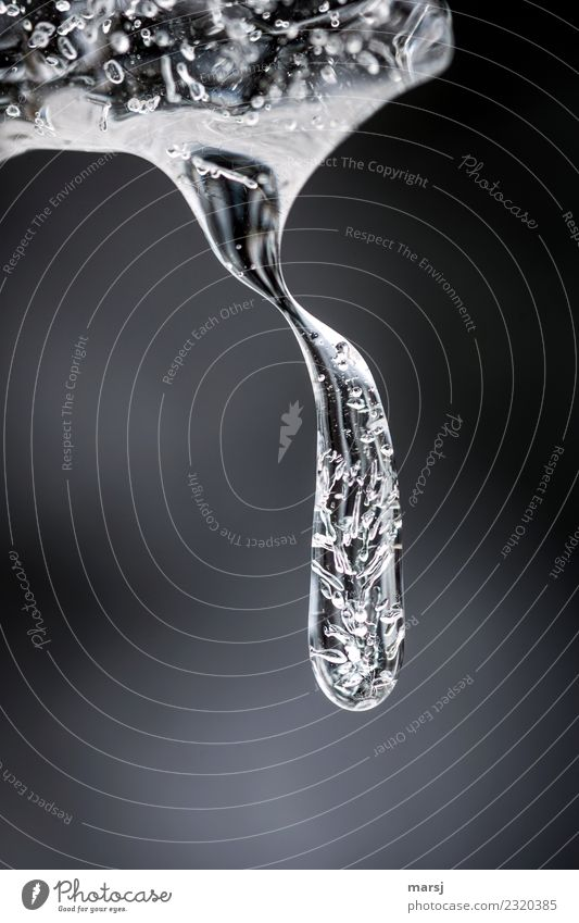 Ice suppository with constriction Life Harmonious Calm Nature Winter Frost Icicle Hang Illuminate Exceptional Elegant Together Cold Gray Contentment Uniqueness