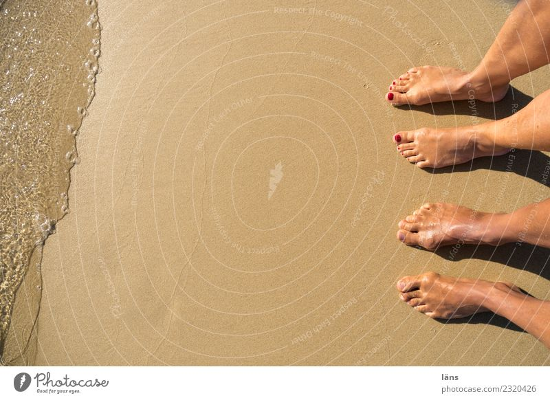 Human being Water Ocean Beach Feet Couple Sand In pairs Greece Naxos