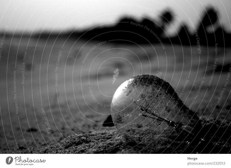 bulb Environment Nature Sand End Energy Black & white photo Evening