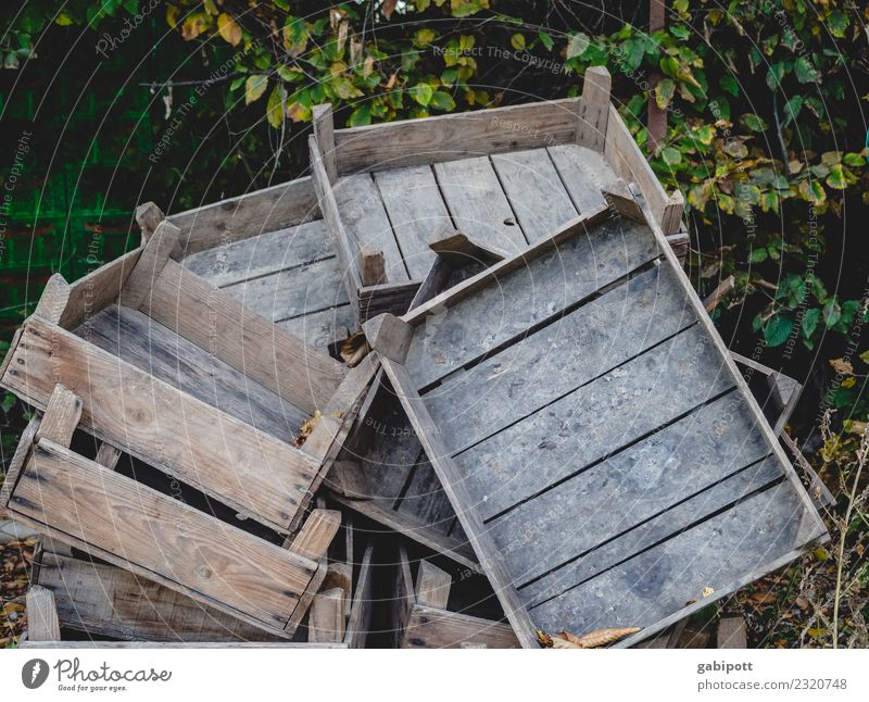 stacked wooden crates Gardening Field Economy Agriculture Forestry Trade Logistics Landscape Elements Earth Wood Old Box of fruit Wooden box Stack