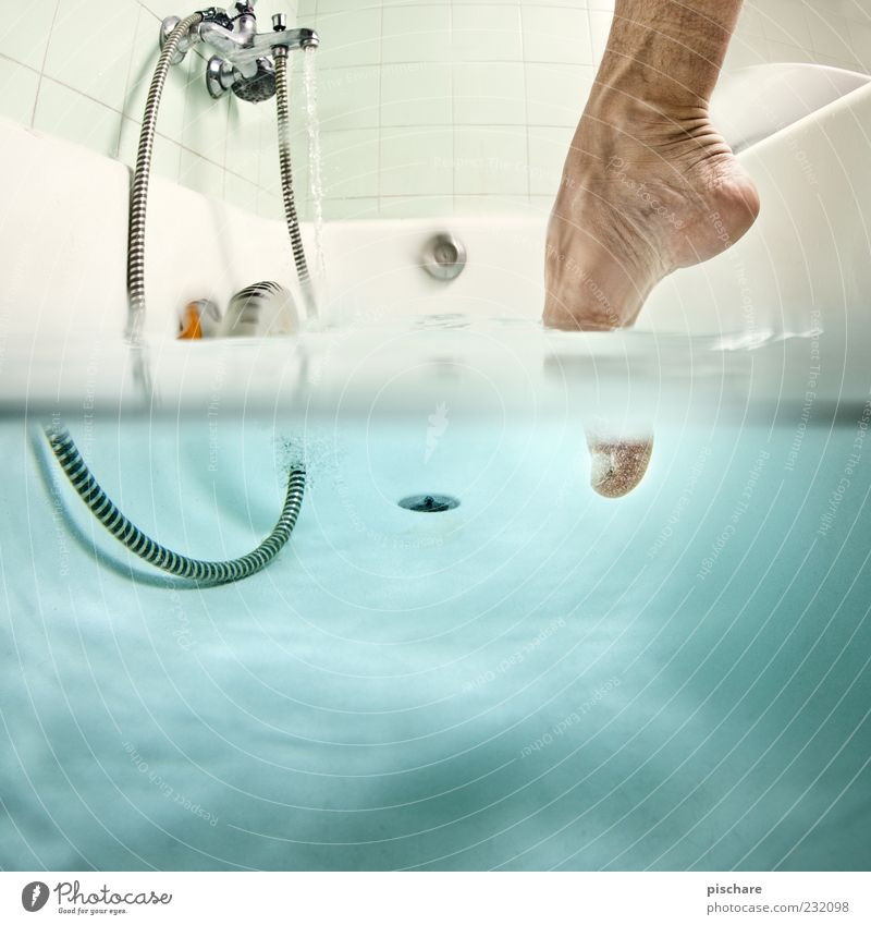 Blue Water Swimming & Bathing Feet Wet Bathtub Bathroom Personal hygiene Dive Tile Anticipation Barefoot Caution Underwater photo Attempt Toes