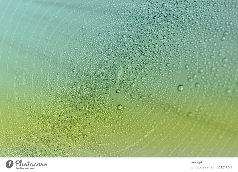 Droplets Water Warmth Background picture Lighting Rain Glittering Drops of water Dew Bubble Damp Air bubble Tropical Beam of light Condense