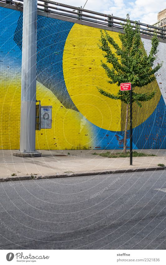 Town Tree Street Graffiti High-rise USA Skyline Street lighting New York City Brooklyn