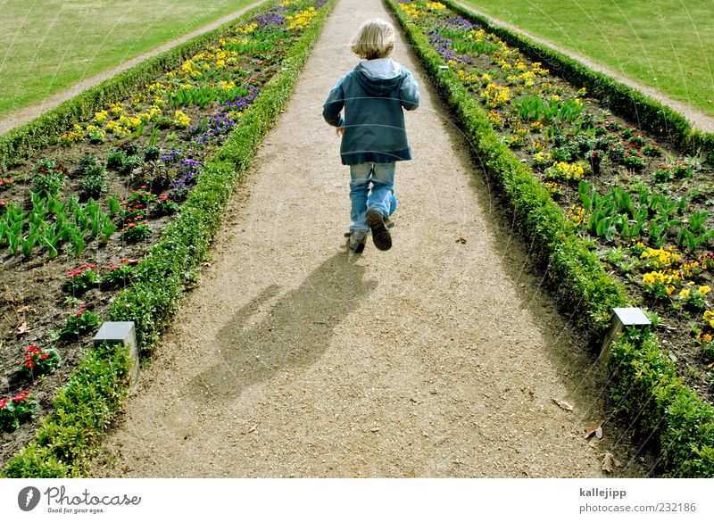 Human being Child Nature Plant Flower Far-off places Environment Meadow Life Landscape Boy (child) Movement Lanes & trails Happy Garden Spring