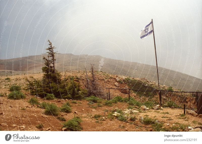 Golan heights Mountain Near and Middle East Environment Nature Landscape Plant Earth Sky Drought Tree Bushes Peak High mountain region Flag War Border Israel