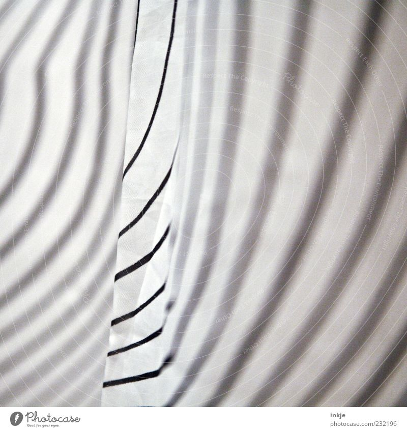 White Black Line Stripe Striped Zebra Abstract Zebra crossing Structures and shapes Pattern Shower curtain