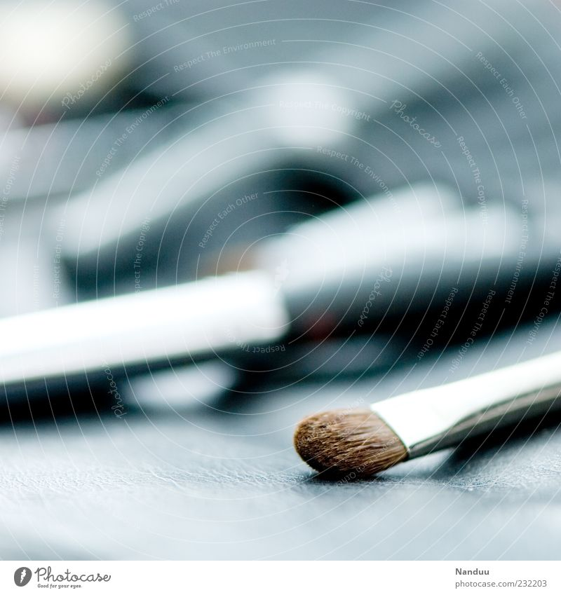 Glittering Lie Symbols and metaphors Depth of field Silver Paintbrush Apply make-up Bristles Make-up artist