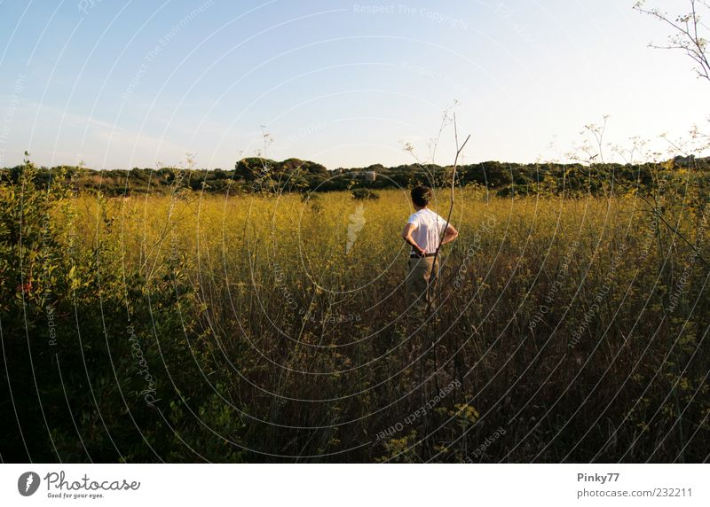 Human being Man Nature Green Summer Loneliness Calm Adults Yellow Meadow Life Landscape Grass Think Field Back