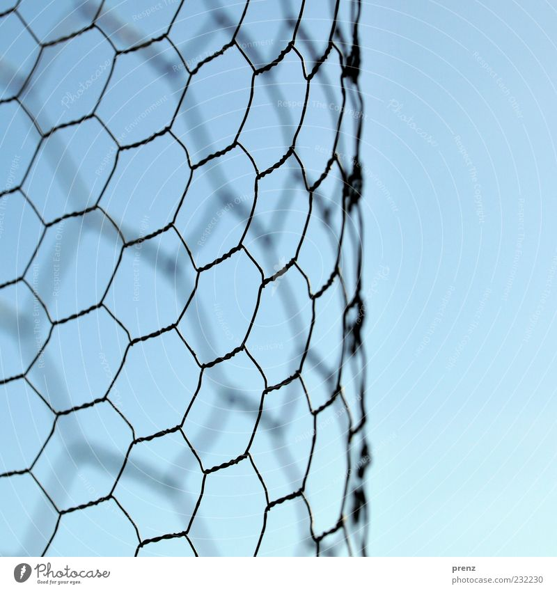mesh Environment Air Sky Metal Line Blue Gray Black Wire Wire netting Wire netting fence Honeycomb Curved Structures and shapes Colour photo Exterior shot