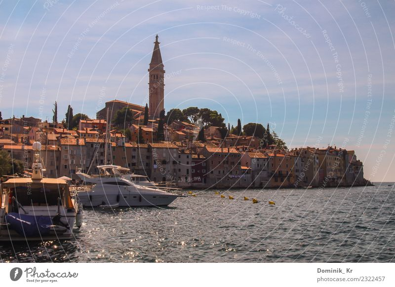 Lovely city Rovinj Shopping Style Vacation & Travel Tourism Trip Far-off places Freedom City trip Summer Summer vacation Sun Ocean Waves Art Architecture Nature