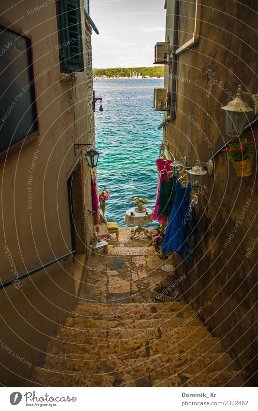 Little alley in Rovinj Style Design Vacation & Travel Freedom Summer Summer vacation Sun Beach Ocean Waves Art Architecture Culture Croatia Small Town Port City