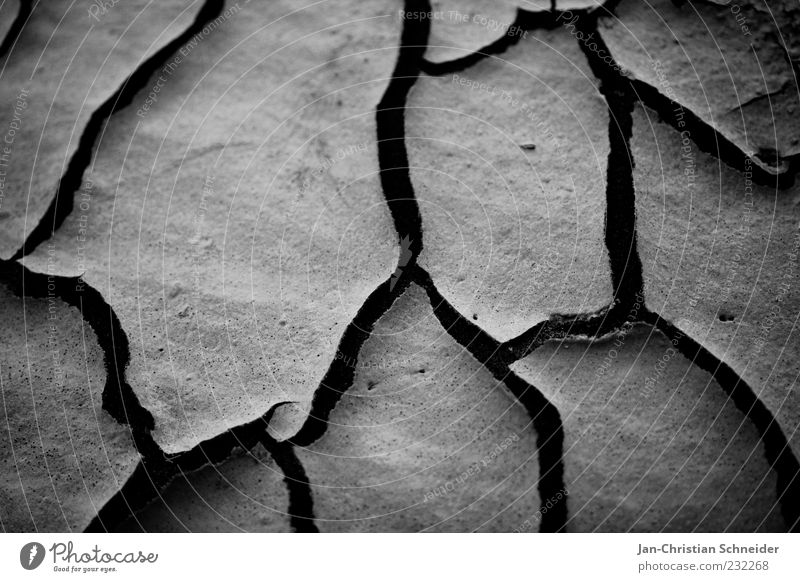 arid Earth Sand Climate Climate change Drought Environment Black & white photo Detail Macro (Extreme close-up) Deserted Neutral Background