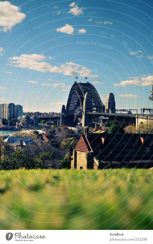 Lovely Harbour Bridge Meadow Hill Sydney Sydney Harbour Port City Architecture Tourist Attraction Landmark Far-off places Sky Blur Colour photo Exterior shot