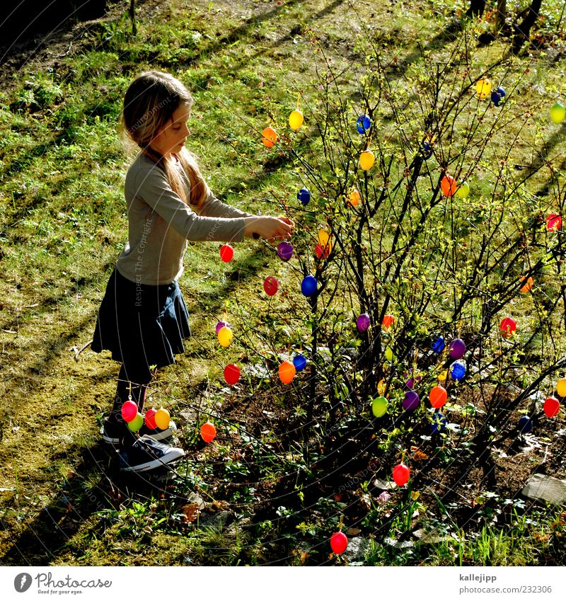 anticipation Lifestyle Joy Happy Playing Garden Feasts & Celebrations Easter Human being Child Girl 1 3 - 8 years Infancy Plant Bushes Meadow Stand Embellish