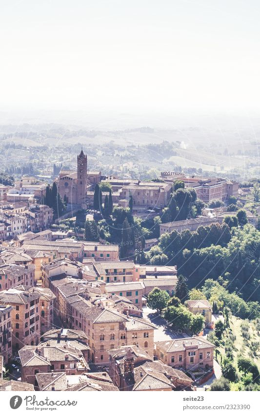 Siena from above - Tuscany, Italy Leisure and hobbies Vacation & Travel Tourism Trip Sightseeing City trip Summer House (Residential Structure) Architecture
