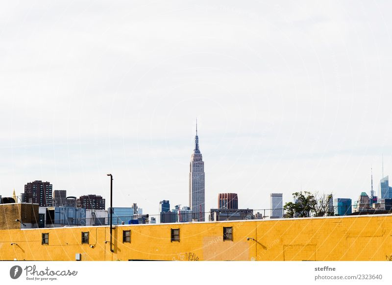 Manhattan Skyline with Empire State Building Town New York City Empire State building yellow wall Wall (barrier) Yellow Colour photo Copy Space top