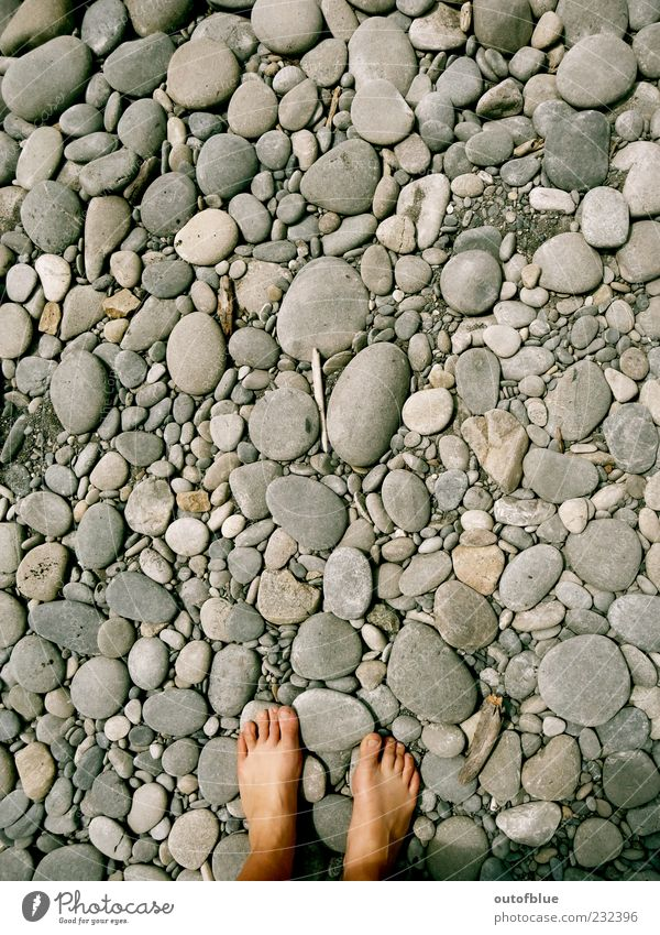 Beach Calm Cold Gray Sand Stone Feet Earth Round Barefoot Pebble Pebble beach