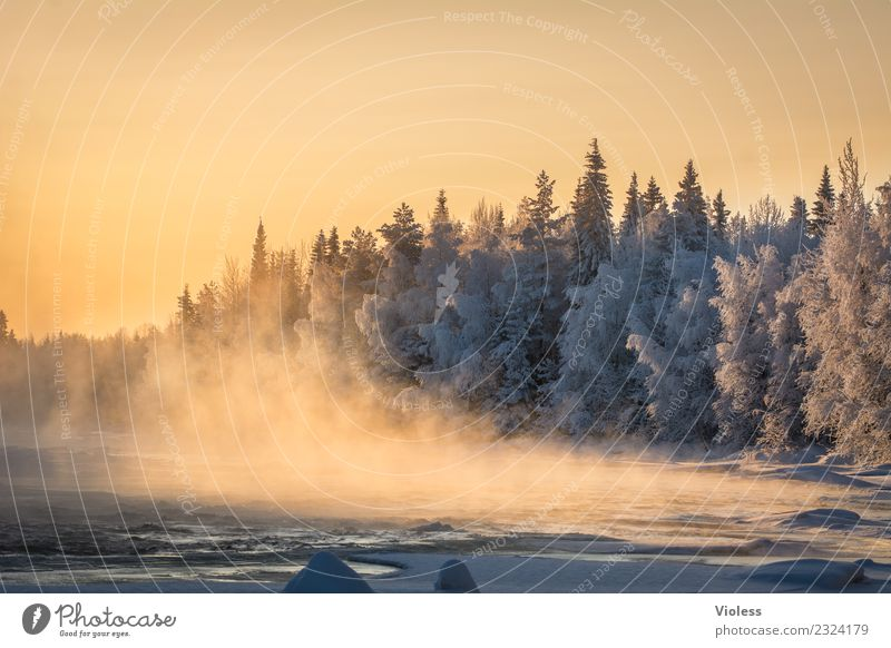 -28° III Finland Snow Snowfall Ice Frozen Rovaniemi Fog Sunset Orange Forest Fir tree White River Cold Winter