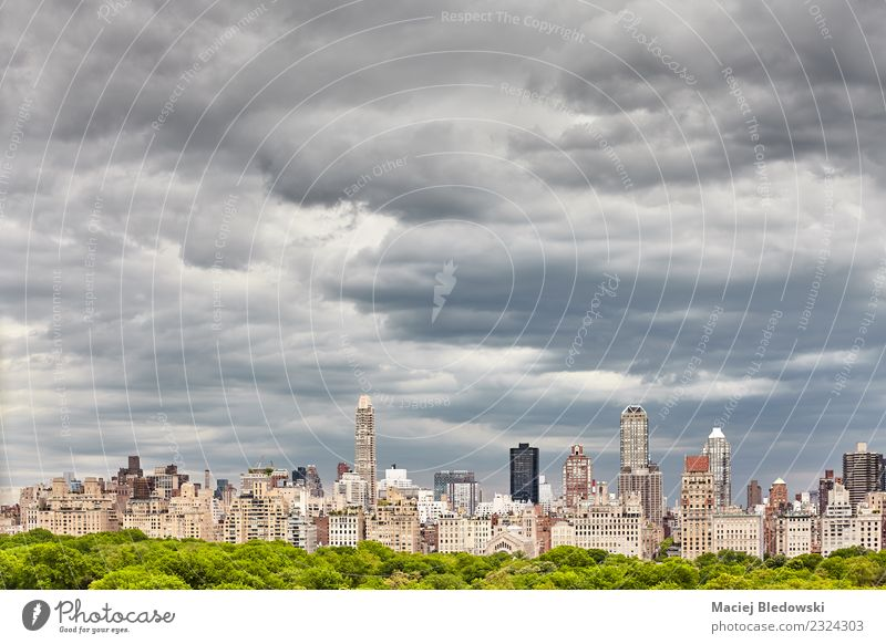 Stormy cloudscape over Manhattan skyline, NYC. Sky Town Landscape Tree House (Residential Structure) Clouds Architecture Building Copy Space Living or residing