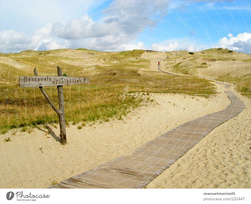 Nature Green Blue Plant Summer Beach Vacation & Travel Landscape Environment Sand Warmth Coast Brown Earth Elements Hill