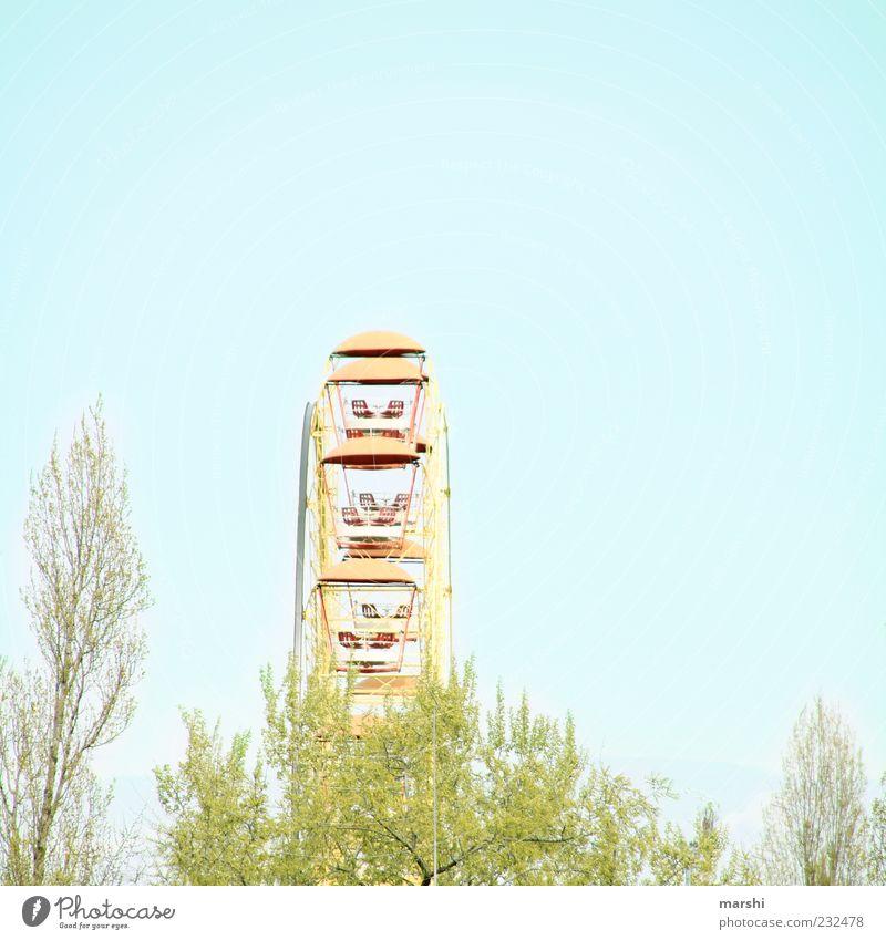 A lap Bright Ferris wheel Fairs & Carnivals Tree Treetop Sky Joy Rotate Amusement Park Colour photo Exterior shot Day Copy Space top Copy Space right