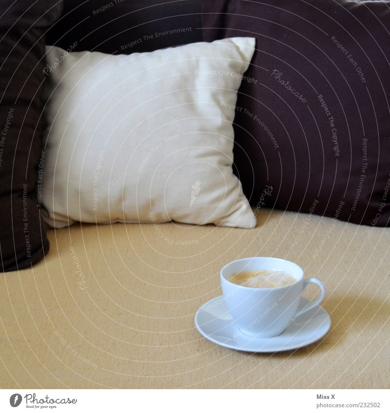 White Calm Relaxation Brown Beverage Coffee Sweet Bed Break Sofa Fluid Crockery Delicious Fragrance To enjoy Blanket